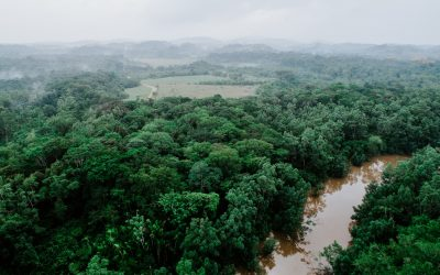 Accompagnement à l'investissement, Guyane Agropole