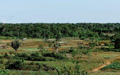 Mission de prospection et demande de foncier agricole